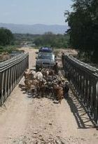 On the road in southern Ethiopia from Arba Minch to Jinka